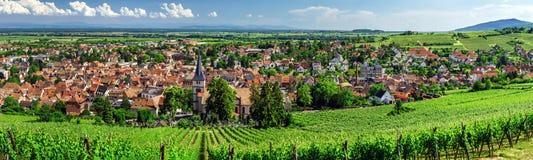 Ampia vista panoramica a Alsacevineyards, Francia Fotografie Stock Libere da Diritti