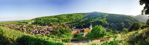 Ampia vista panoramica a Alsacevineyards, Francia Immagine Stock Libera da Diritti