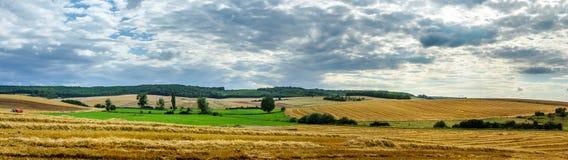 Ampia vista panoramica del campo variopinto, della natura e dell'agricoltura Immagini Stock Libere da Diritti