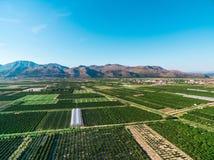 Ampie aree di terra e dei raccolti fertili in Croazia del sud Fotografie Stock Libere da Diritti