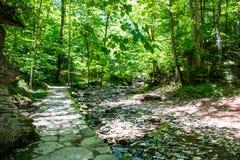 Ampio Rocky Creek con il percorso immagine stock