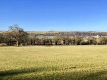 Ampleforth-Tal, Yorkshire im Winter Stockfotos