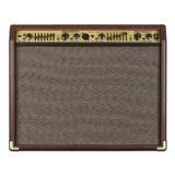 amplifikator akustyczna gitara Zdjęcie Stock