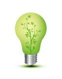 Ampola com planta foto de stock royalty free
