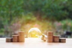 Ampola de poupança de energia com as pilhas de moedas na natureza Fotografia de Stock