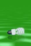 Ampola fluorescente Imagens de Stock