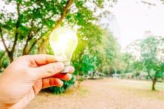 Ampola guardando humana e para borrar a natureza verde no parque fotos de stock