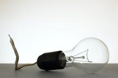 Ampola instalada no soquete de lâmpada imundo fotografia de stock royalty free