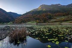 Ampola jezioro Zdjęcia Stock