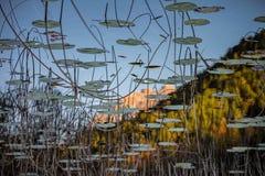 Ampola jezioro Fotografia Stock