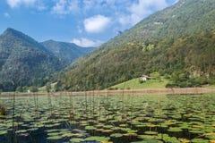 Ampola jezioro Zdjęcie Stock