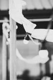 Ampolas em um fio com ornamento brancos e tochas em um beac Imagens de Stock