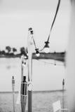 Ampolas em um fio com ornamento brancos e tochas em um beac Foto de Stock Royalty Free