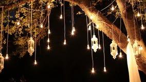 Ampolas que penduram nas madeiras, lanterna de vidro do filamento antigo decorativo do estilo de edison, jardim da decoração da l video estoque