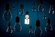 Ampoule économiseuse d'énergie d'Eco accrochant sur le fil parmi l'ampoule incandescente Photo libre de droits