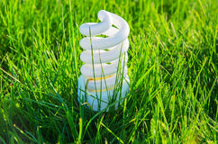 Ampoule économiseuse d'énergie dans l'herbe Image libre de droits