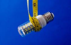 Ampoule économiseuse d'énergie de DEL Photographie stock libre de droits