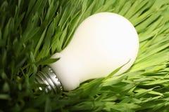 Ampoule économiseuse d'énergie rougeoyante sur l'herbe verte Photographie stock
