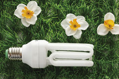 Ampoule économiseuse d'énergie sur le gazon synthétique, plan rapproché Images libres de droits