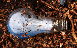 ampoule Photos stock