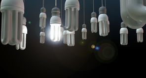 Ampoule accrochante de direction Photos stock