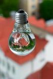 Ampoule avec de l'eau Images libres de droits