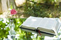 Ampoule avec la bible de livre photos libres de droits