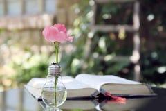 Ampoule avec la bible de livre photos stock