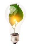 Ampoule avec la centrale images libres de droits