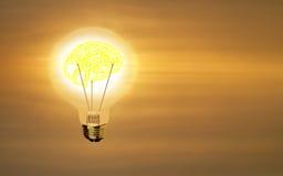 Ampoule avec le cerveau d'éclairage sur le fond sunrising de ciel Photos stock
