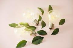 Ampoule avec les feuilles vertes