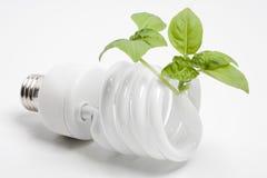 Ampoule d'énergie verte Photographie stock libre de droits