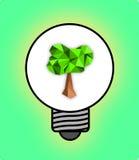 Ampoule d'arbre sur un fond vert image libre de droits