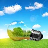 Ampoule d'Eco dans l'herbe illustration stock