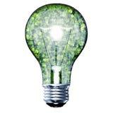 Ampoule d'Eco faite à partir des feuilles vertes Image stock