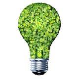 Ampoule d'Eco faite à partir des feuilles vertes Photos stock