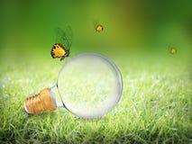 Ampoule d'edison de puissance élevée sur la nature verte avec le papillon Photographie stock libre de droits