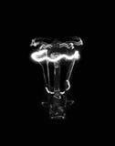 Ampoule dans l'obscurité image libre de droits