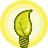 Ampoule de feuille Photo libre de droits
