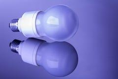 Ampoule de lampe économiseuse d'énergie Photo stock