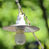 Ampoule de lampe antique sur le câble avec le bokeh vert de nature à l'arrière-plan Photo stock