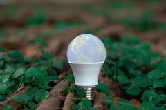 Ampoule de LED à l'arrière-plan de nature de forêt - concept d'économiser ène photo stock