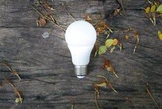 Ampoule de LED avec l'éclairage image stock