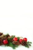 Ampoule de Noël, cône de pin, et frontière à feuilles persistantes d'isolement sur Pentecôte image stock