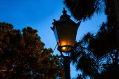 Ampoule de réverbère au parc sombre Vieux rétro réverbères photo stock