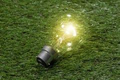 Ampoule en verre électrique sur le fond d'herbe Concep de créativité d'idées Image libre de droits