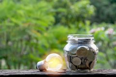 Ampoule et pièces de monnaie économiseuses d'énergie dans le pot en verre sur le backgr de nature Photos stock
