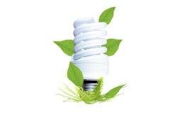 Ampoule fluorescente comme symbole de conservation environnementale Photo libre de droits