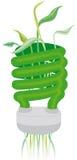 Ampoule verte d'Eco illustration stock