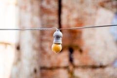 ampoules accrochant sur un endroit fixe Images libres de droits
